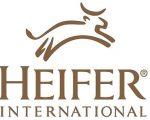Heifer International in Tanzania